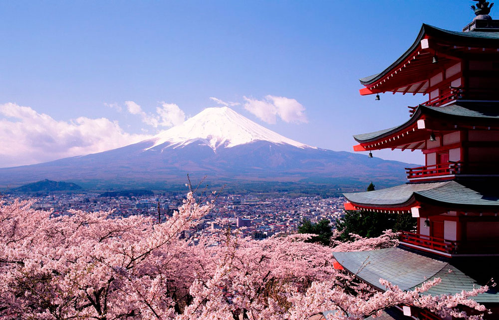 The Perfect Light busca candidatos para viajar a Japon